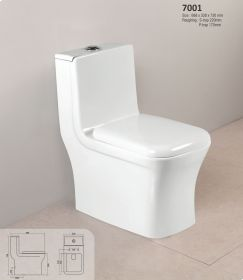 Ambani White Ceramic Glossy Toilet Europe/Western Closet (EWC) 7001